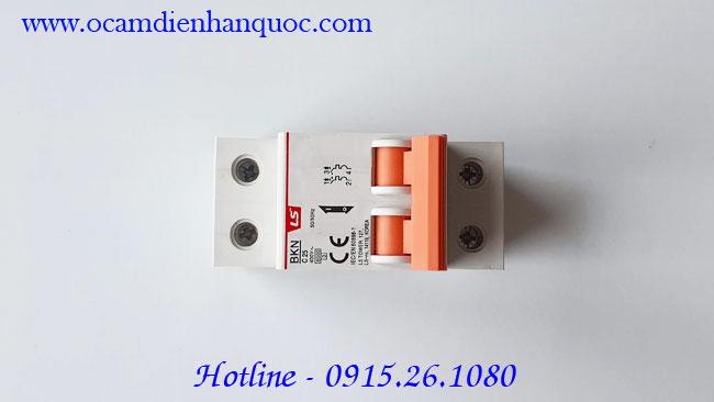 Aptomat-LS-2P-25A-MCB-BKN